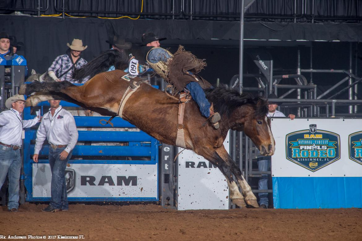 Barnes Prca Rodeo Continuing The Tradition Started In 1950