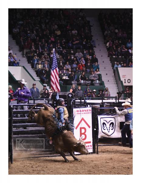 Champion Bull Riders heading to the Minnesota State Fair on Monday, Sept. 4